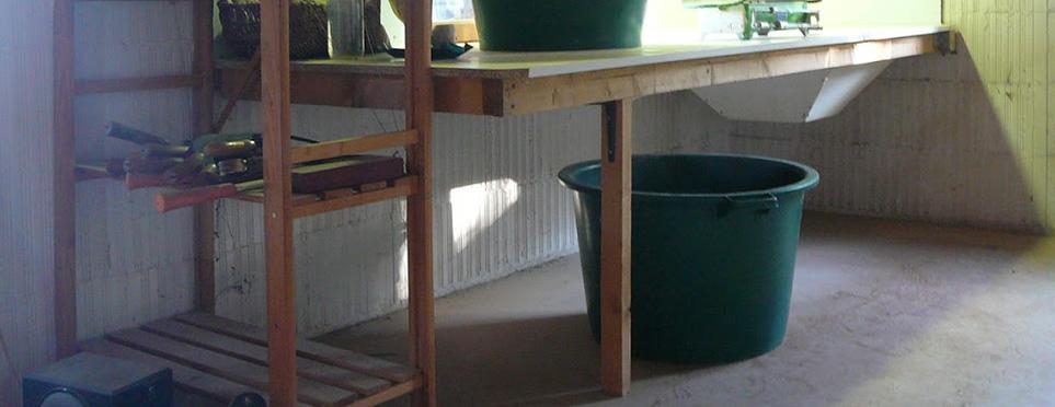 Table d'effeuillage des plantes