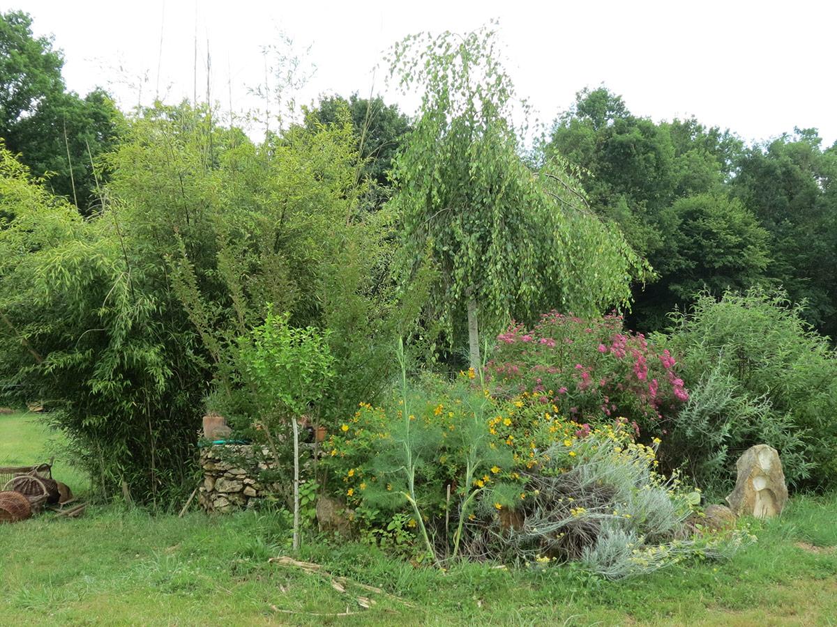 puits et centre vital du jardin
