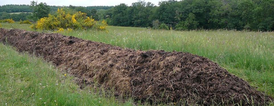 Le tas de compost préparé avec le fumier d'Alpaga, et les préparations biodynamiques