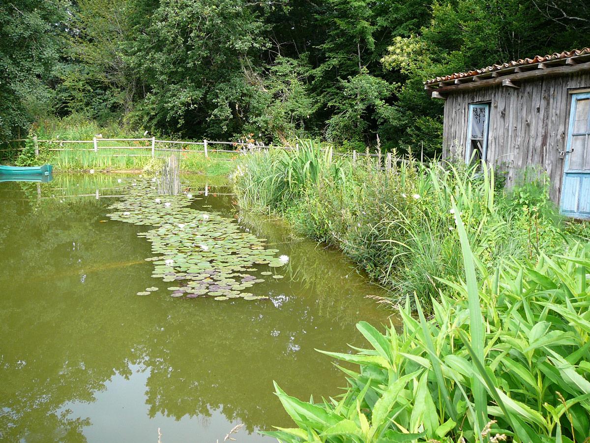 la cabane en bordure du bassin