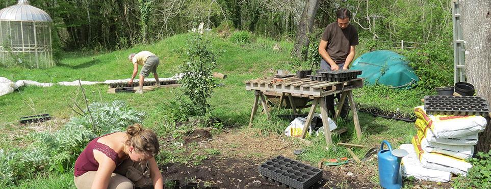 journée active de printemps : repiquage de plants !