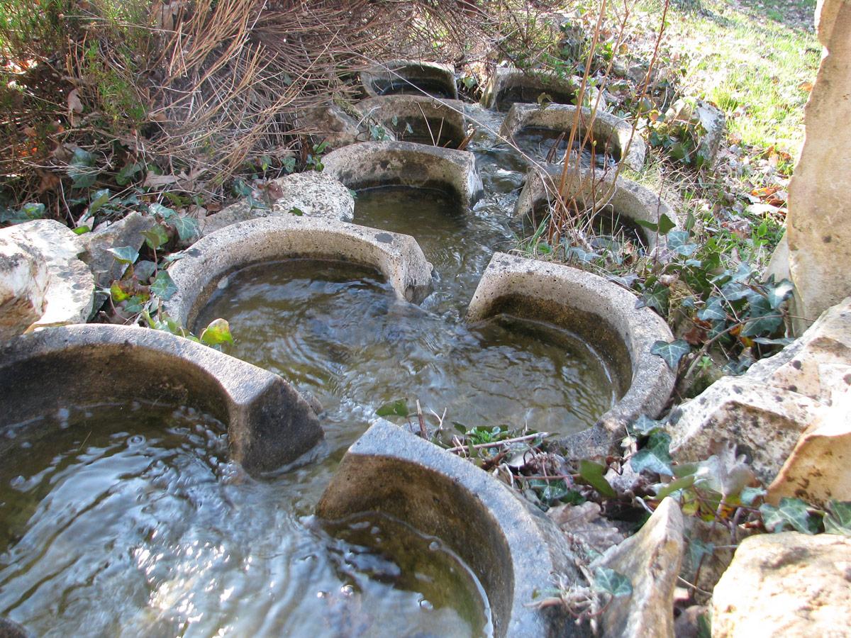 les vasques vives au bassin d'eau…