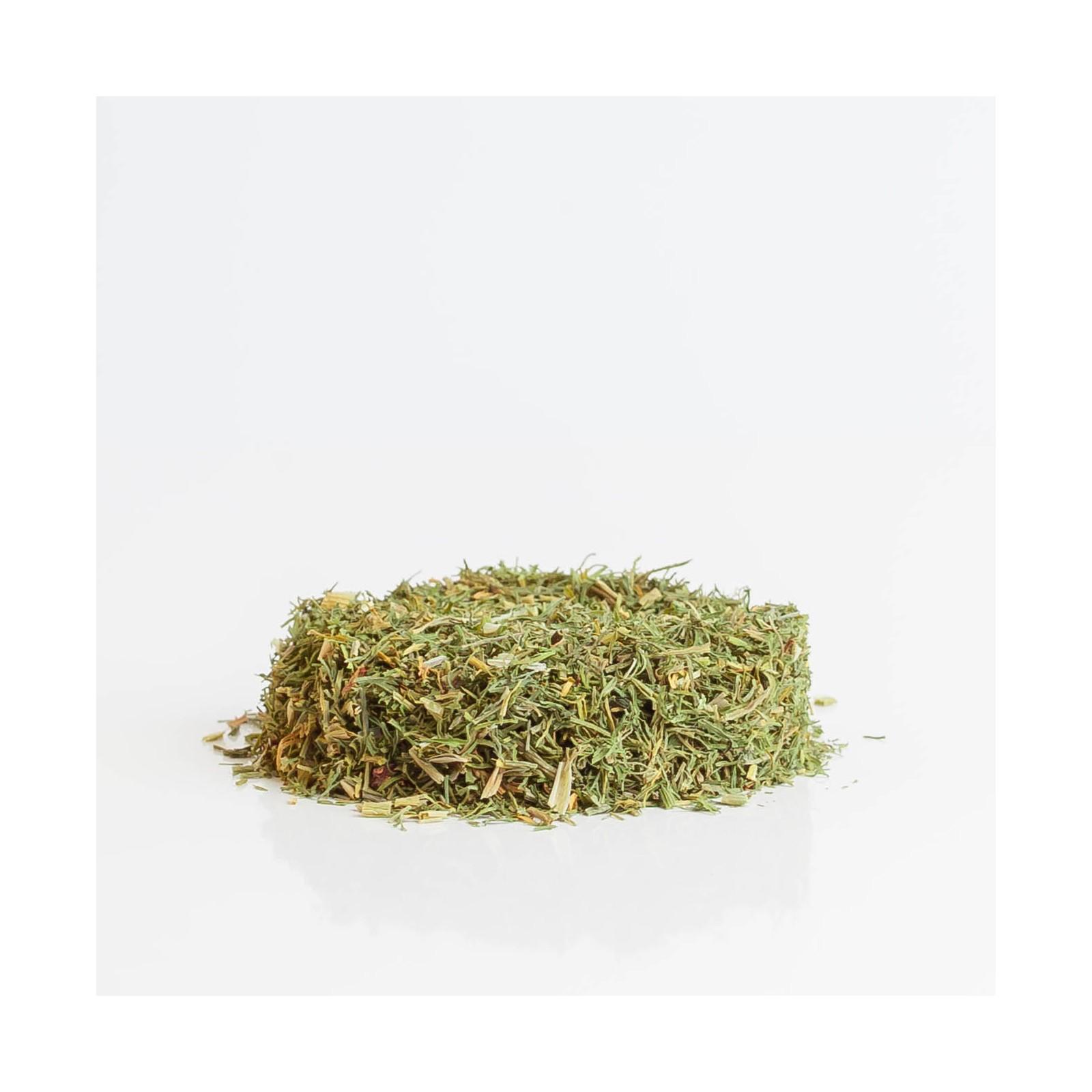 Aneth 184  plantes condimentaires