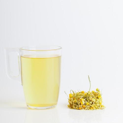 Kamillenfieber (Matricaria)