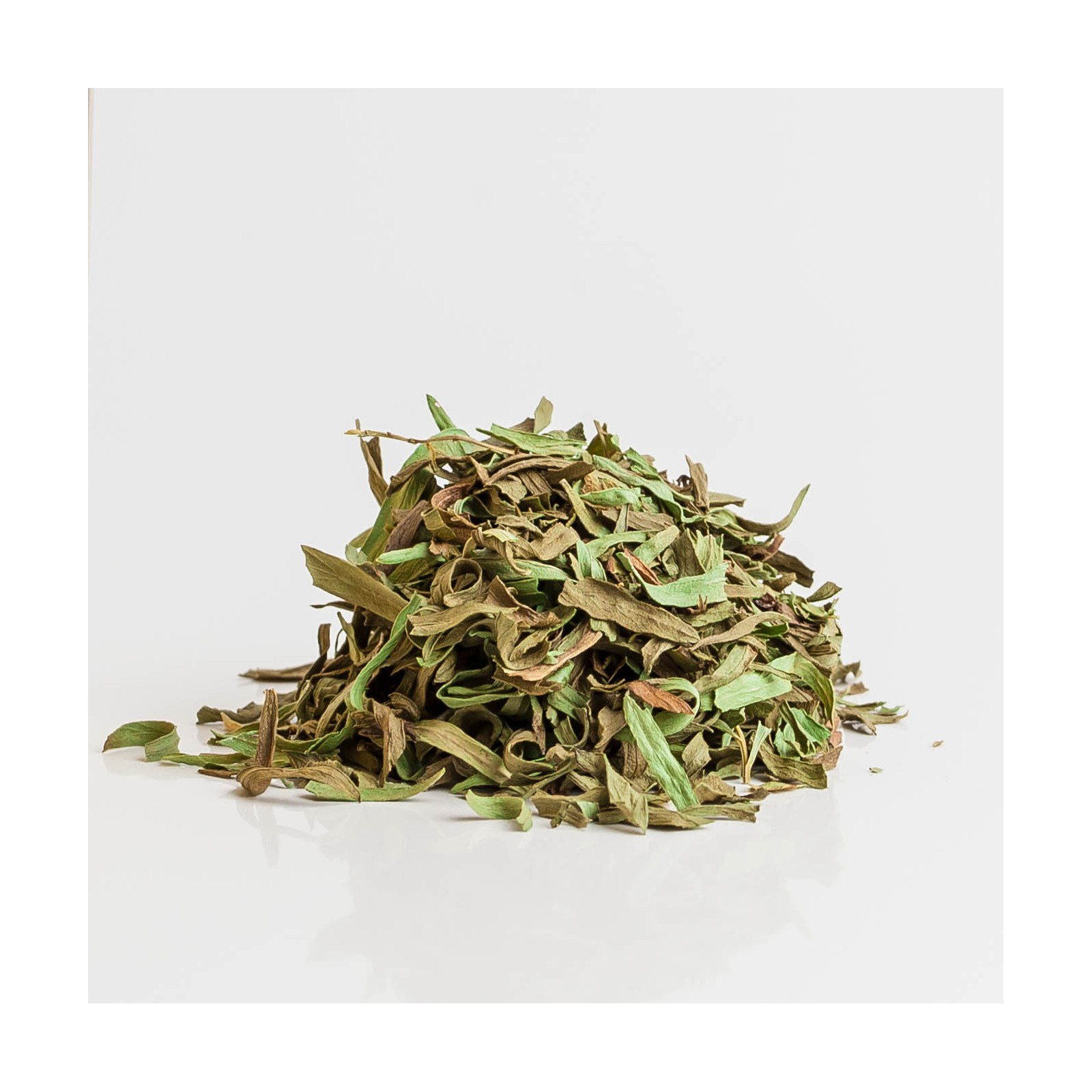 Estragon 212  plantes condimentaires