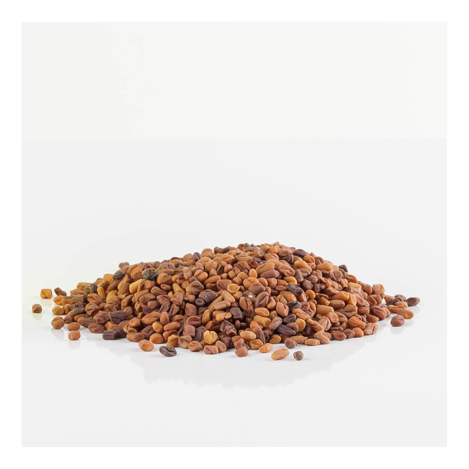 Fenugrec 215  plantes condimentaires