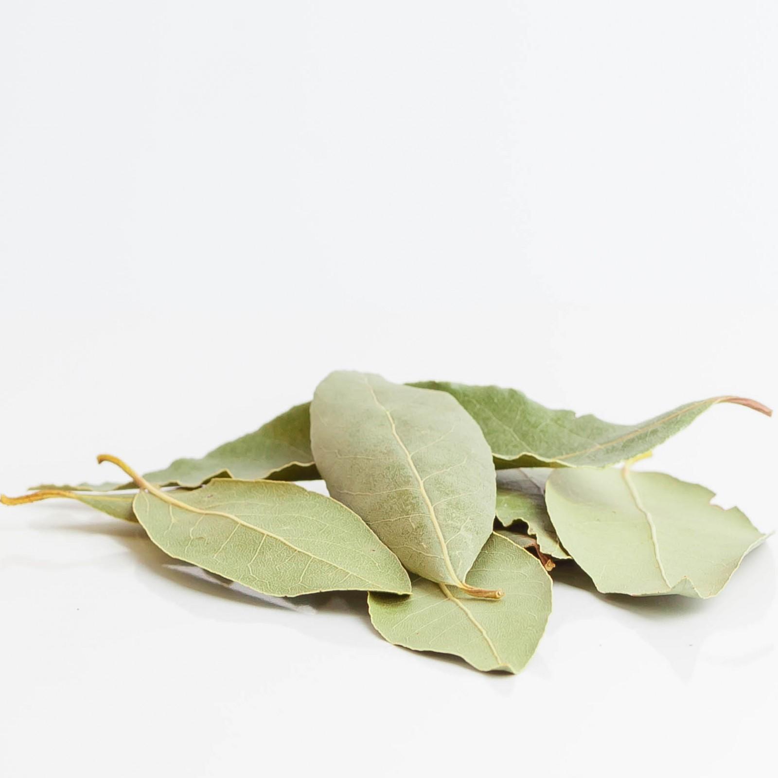 Lorbeer 223  plantes condimentaires