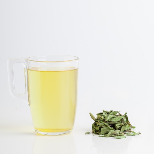 Menthe citron (Menthe bergamote)