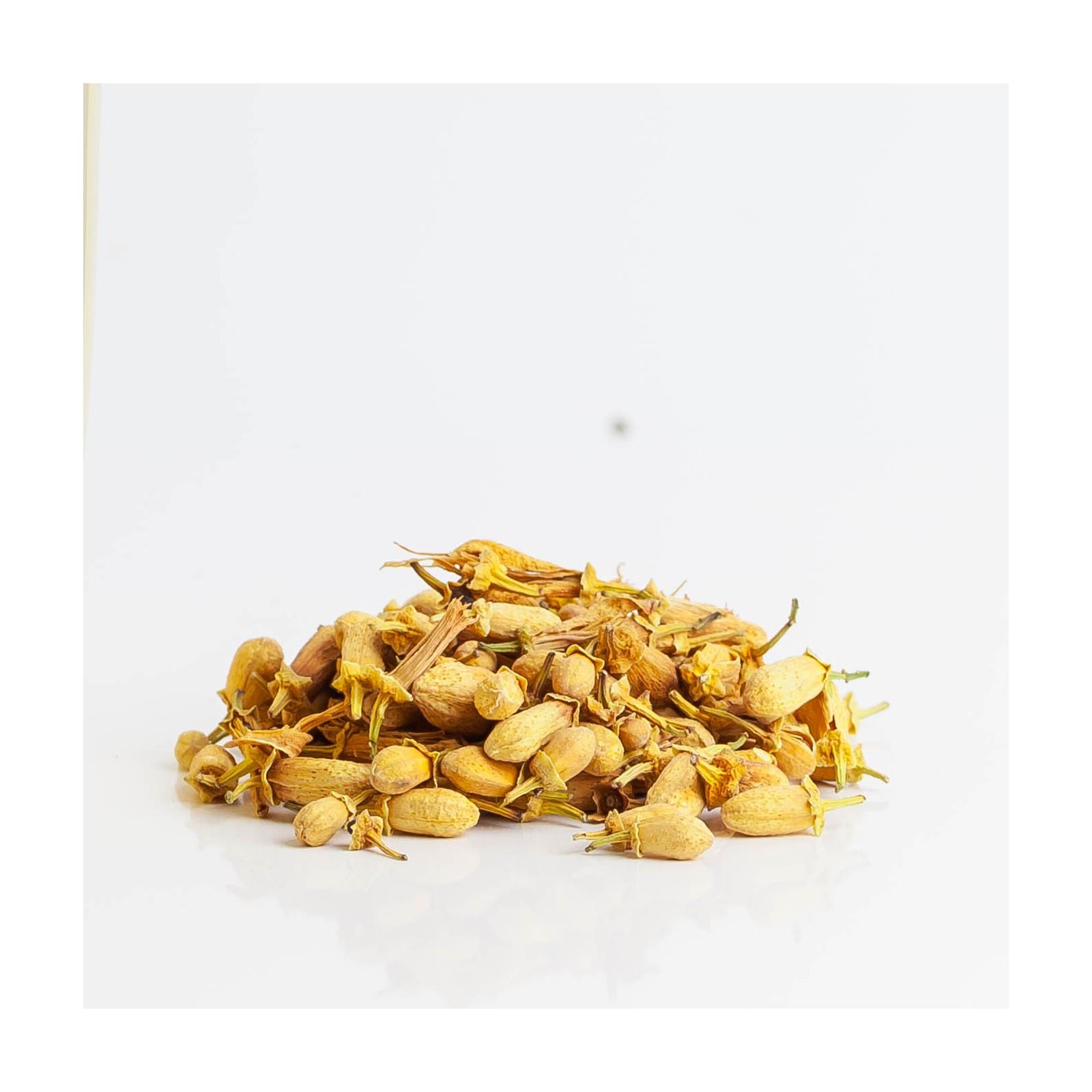 Oranger 237  plantes condimentaires