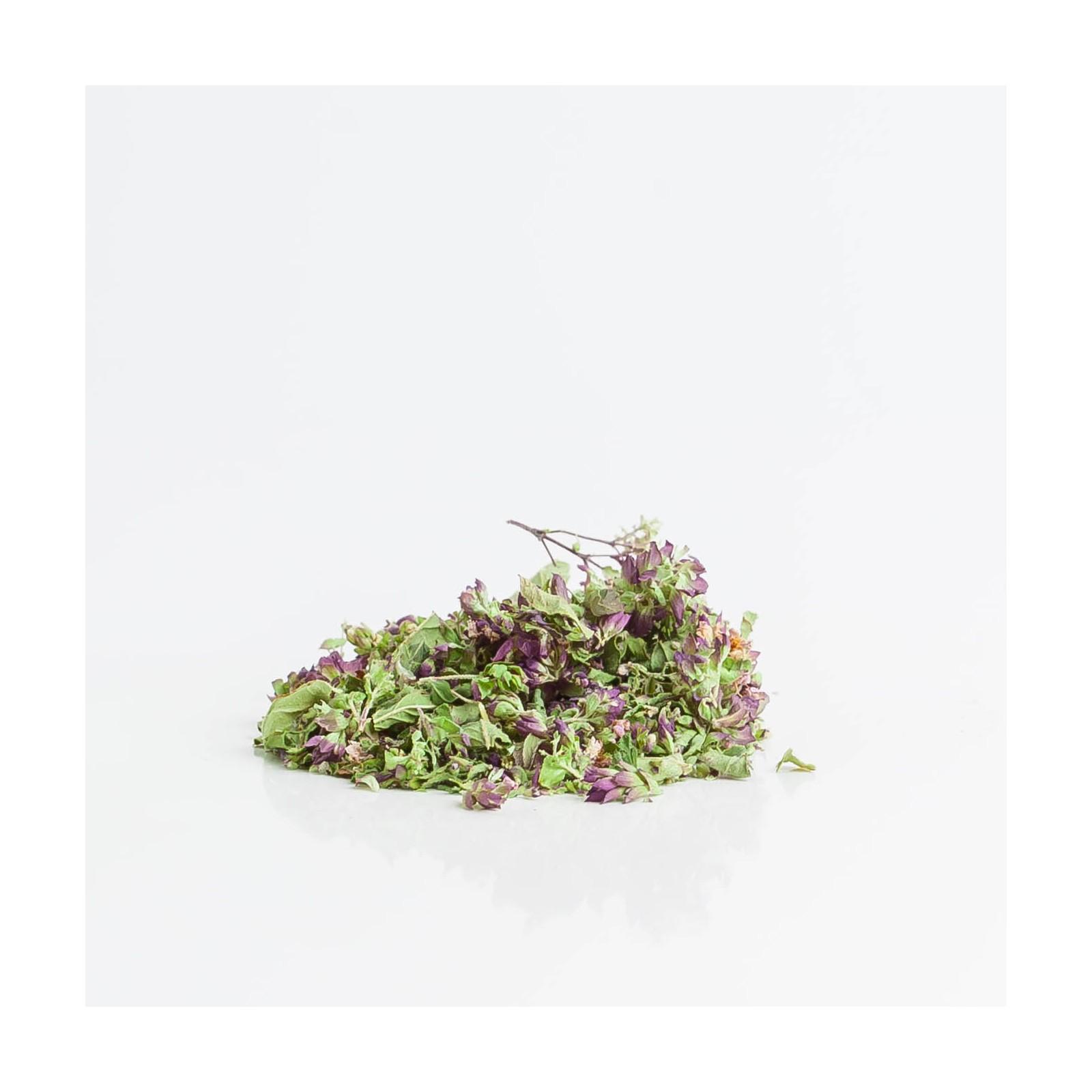 Oregano 238  plantes condimentaires