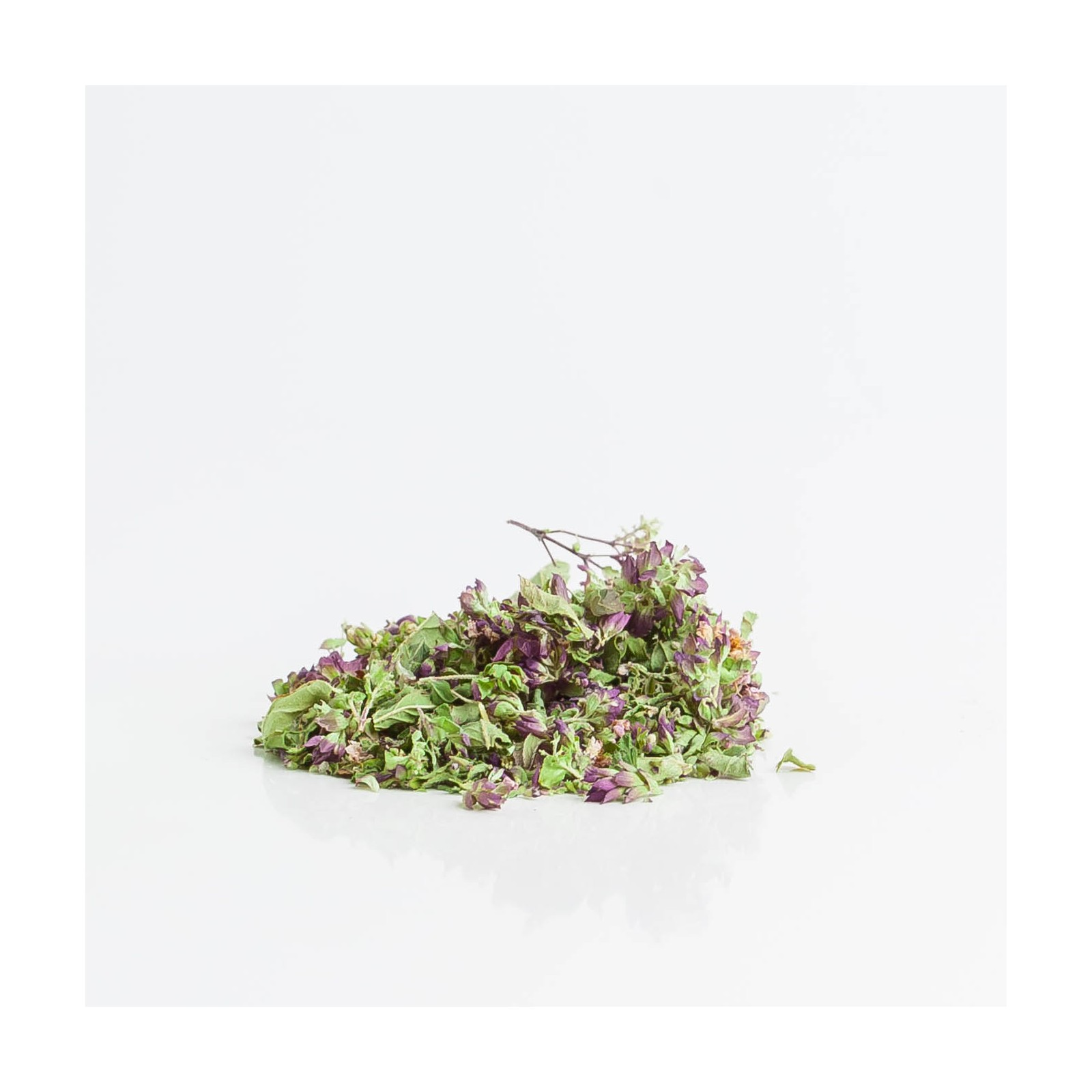 Origan 238  plantes condimentaires