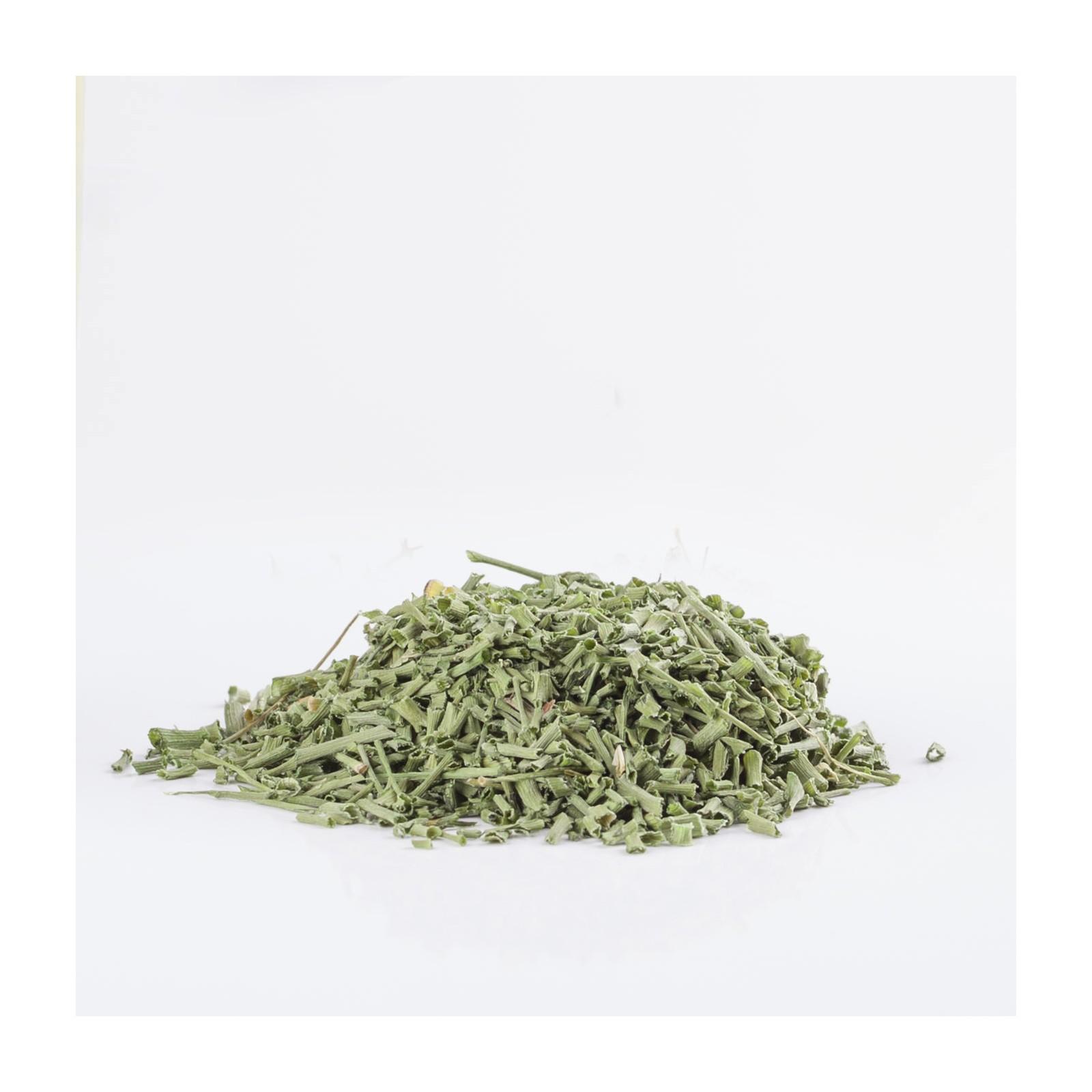 Ciboulette 204  plantes condimentaires