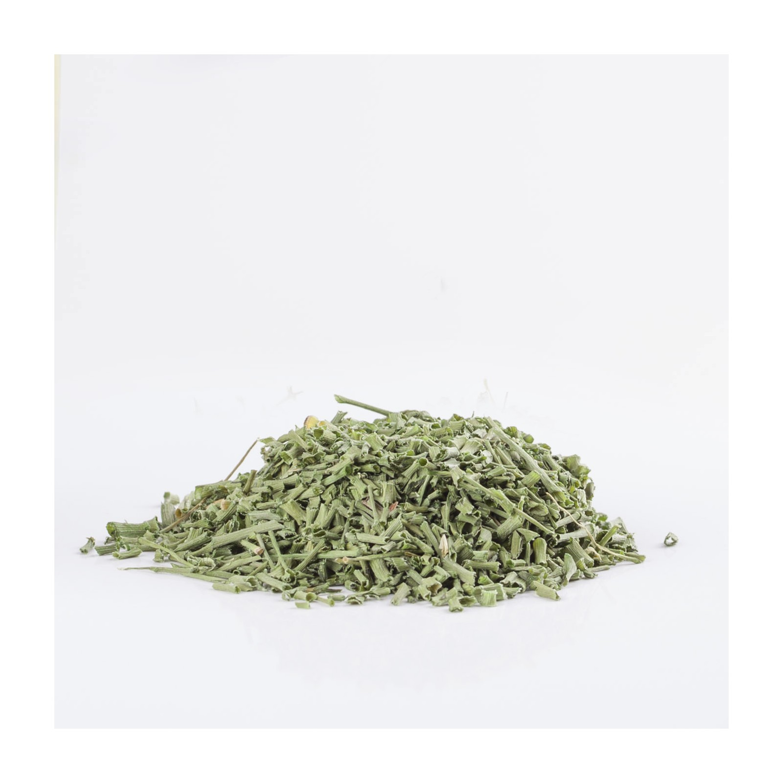 Schnittlauch 204  plantes condimentaires