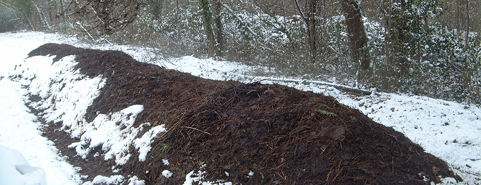 le tas de compost hiverne…