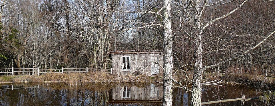 cabane, bassin, et arbres dénudés…